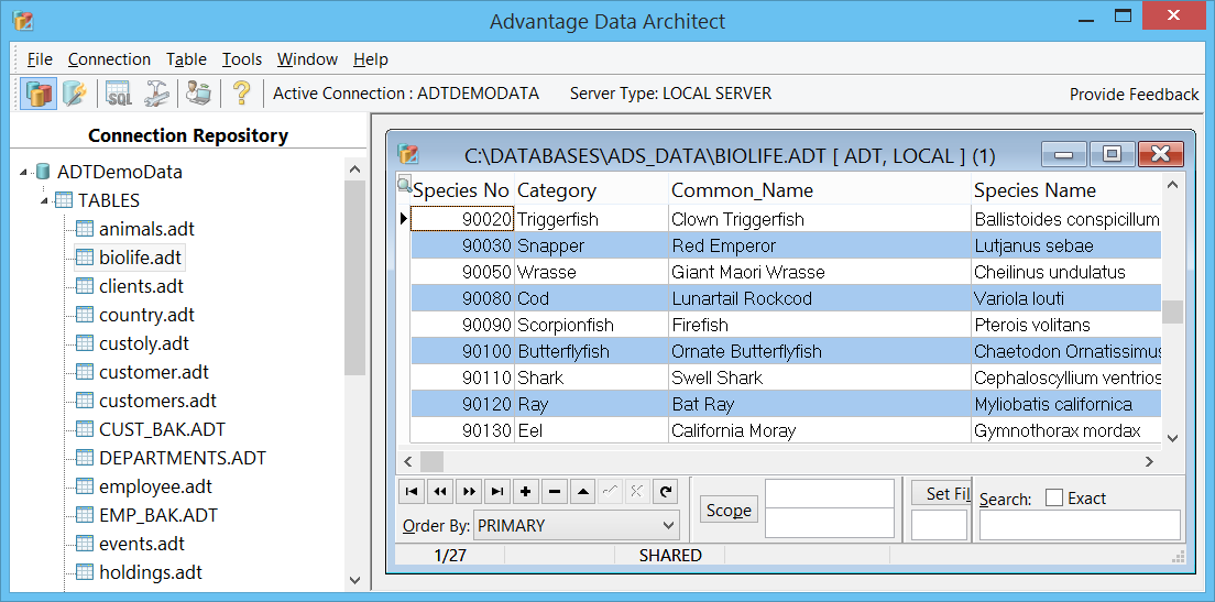 Advantage Data Architect